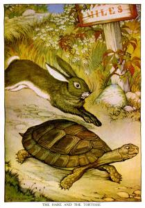hare-and-tortoise-694263