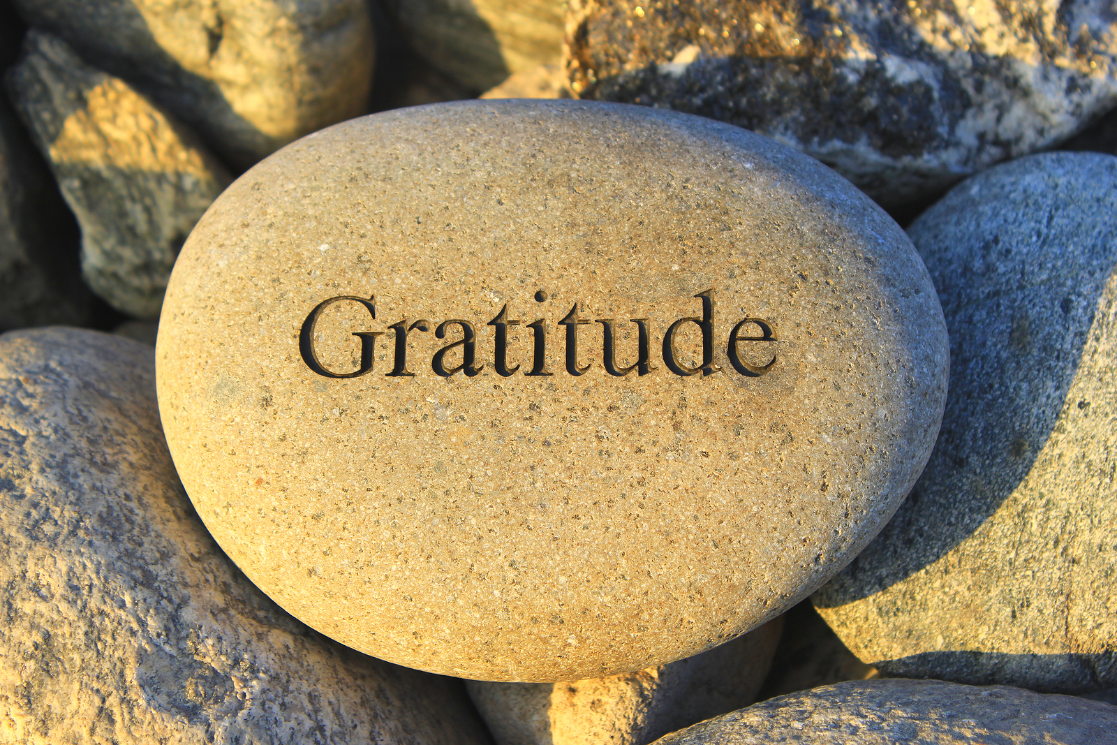 gratitude rock powerchair diaries meals or feasts gratitude rock